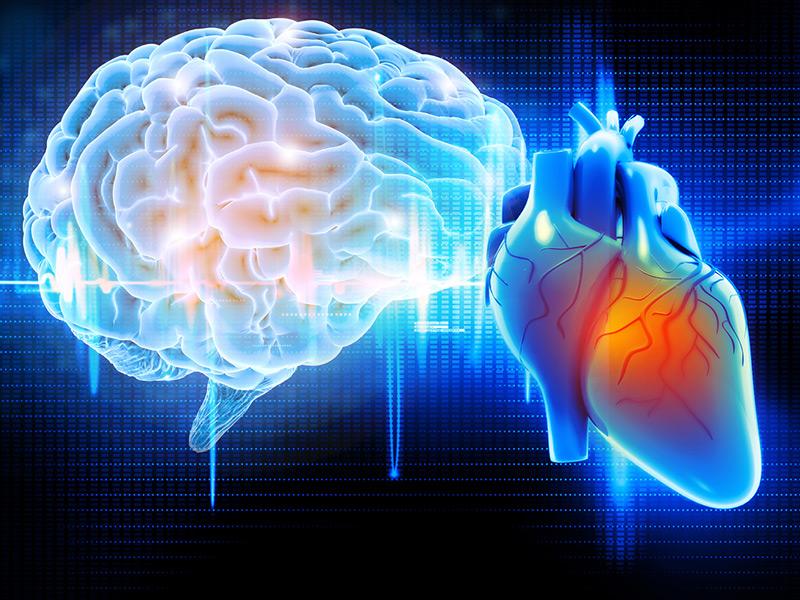 Cómo ser un cantante de corazón: no todo sucede en tu cerebro cuando cantas